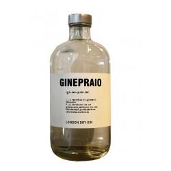 GIN GINEPRAIO BIO CL 50